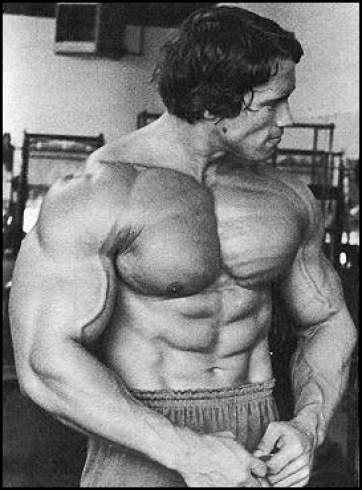 Arnold-Sideways-Most-Muscular